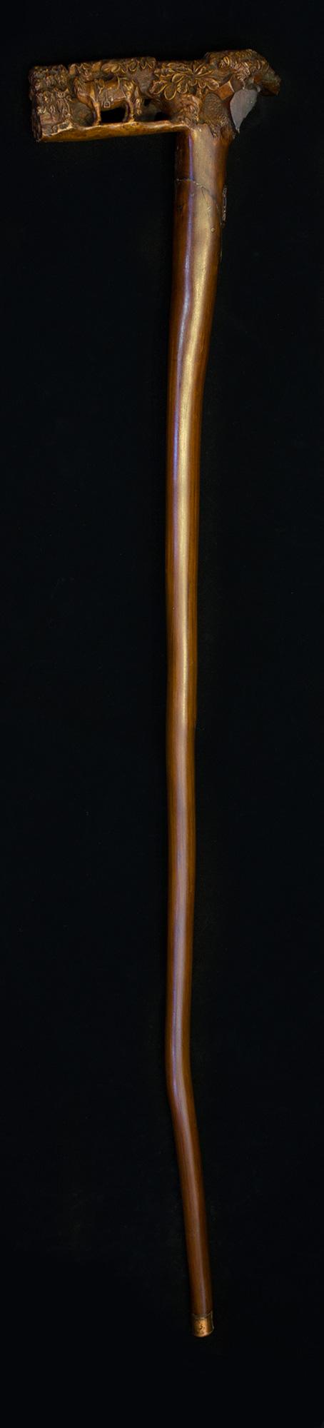 69- Bengala portuguesa 1