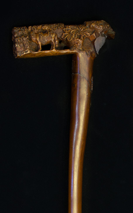 69- Bengala portuguesa